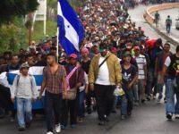 ترامپ تهدید کرد مرز آمریکا با مکزیک را میبندد